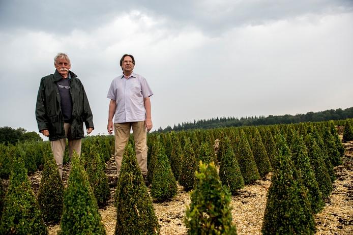 Emstenaren willen geen kwekerij voor kerstbomen